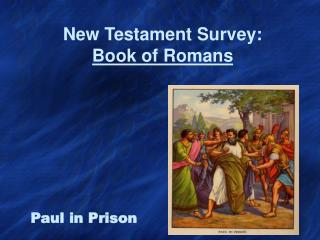 New Testament Survey: Book of Romans