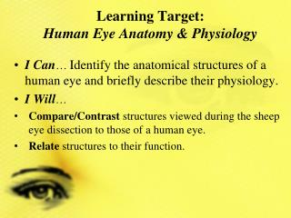 Learning Target:   Human Eye Anatomy & Physiology