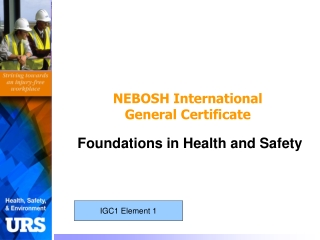 OHSAS 18001 Occupational Safety  Health OHS