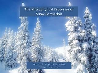 The Microphysical Processes of Snow Formation