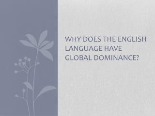 Why does the  english  language have global dominance?
