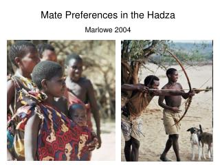 Mate Preferences in the Hadza Marlowe 2004