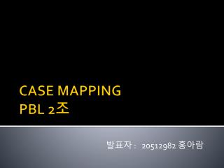 CASE MAPPING  PBL 2 조