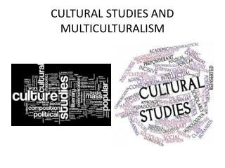 CULTURAL STUDIES AND MULTICULTURALISM