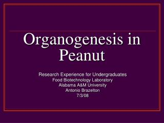 Organogenesis in Peanut