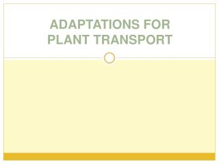 ADAPTATIONS FOR PLANT TRANSPORT
