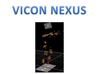 VICON NEXUS