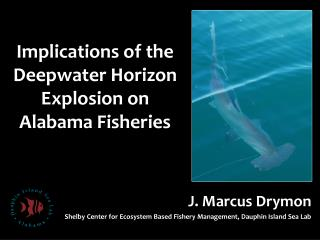 Implications of the  Deepwater  Horizon Explosion on Alabama Fisheries