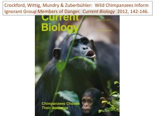 W ild  chimpanzees produce  2  basic types of vocal  alarms: