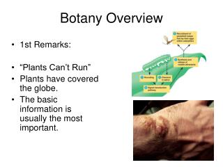 Botany Overview