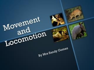 Movement and Locomotion