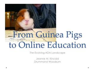 From Guinea Pigs to Online Education