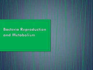 Bacteria Reproduction and Metabolism