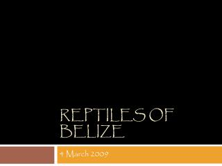 Reptiles of Belize
