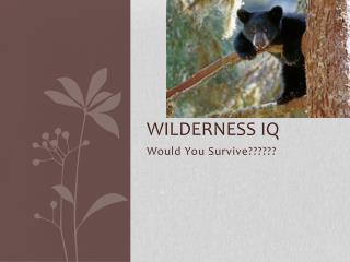 Wilderness IQ