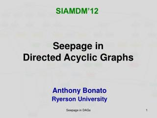 Seepage in  Directed Acyclic Graphs