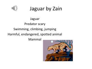 Jaguar by Zain