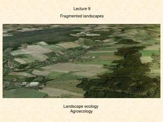 Lecture  9 Fragmented  landscapes