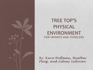 Tree Top's  Physical Environment