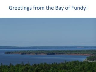Greetings from the Bay of Fundy!