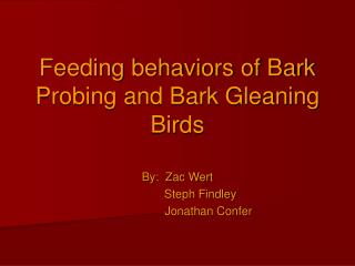 Feeding behaviors of Bark Probing and Bark Gleaning Birds