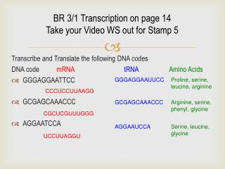 BR 3/1 Transcription on page 14 Take your Video WS out for Stamp 5