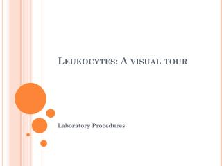 Leukocytes: A visual tour
