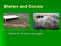 Shelter and Corrals
