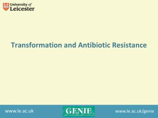 Transformation and Antibiotic Resistance