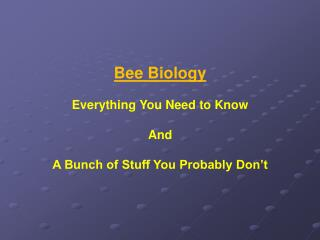 Bee Biology Everything You Need to Know And A Bunch of Stuff You Probably Don't