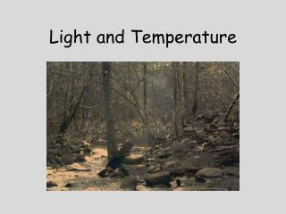 Light and Temperature