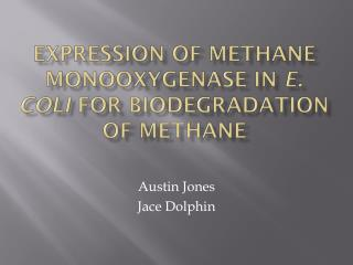 Expression of methane  monooxygenase  in  E. coli  for biodegradation of methane