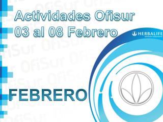 Actividades Ofisur 03 al  08 Febrero