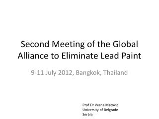 Second Meeting of the Global Alliance to Eliminate Lead Paint