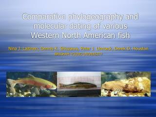 Comparative  phylogeography  and molecular dating of various  Western North American fish