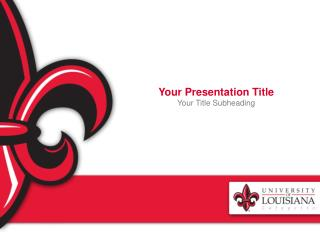 Your Presentation Title Your  Title Subheading