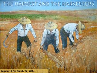 THE HARVEST AND THE HARVESTERS
