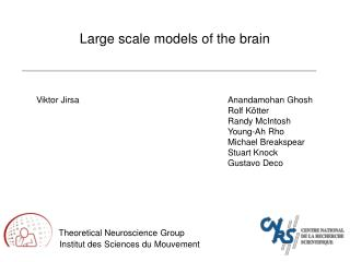 Large scale models of the brain