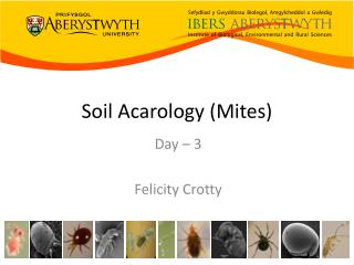 Soil  Acarology  (Mites)
