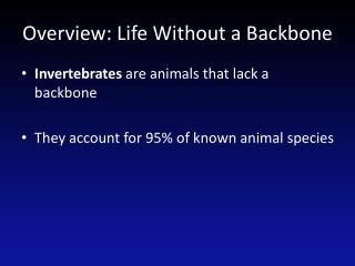 Overview: Life Without a Backbone