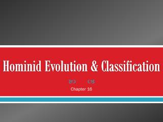Hominid Evolution & Classification