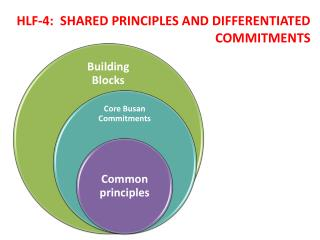 HLF-4:  SHARED PRINCIPLES AND DIFFERENTIATED COMMITMENTS