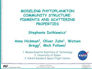 MODELING PHYTOPLANKTON COMMUNITY STRUCTURE: PIGMENTS AND SCATTERING PROPERTIES