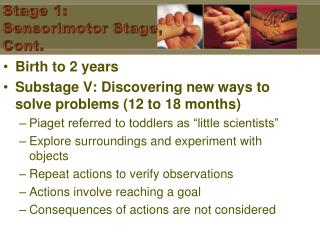Stage 1: Sensorimotor Stage, Cont.