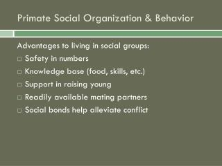 Primate Social Organization & Behavior