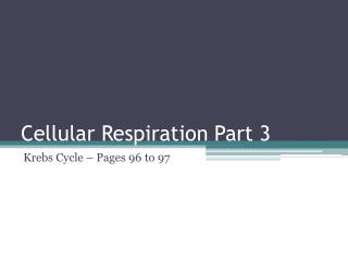Cellular Respiration Part 3