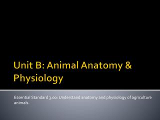 Unit B:  Animal Anatomy & Physiology