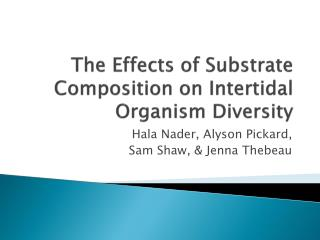 The Effects of Substrate Composition on Intertidal Organism Diversity