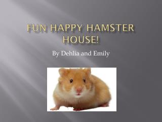 Fun Happy Hamster House!