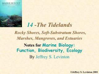 14  -The Tidelands Rocky Shores, Soft-Substratum Shores, Marshes, Mangroves, and Estuaries